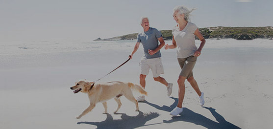 Complement revenus retraite