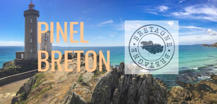 investir-pinel breton-iselection