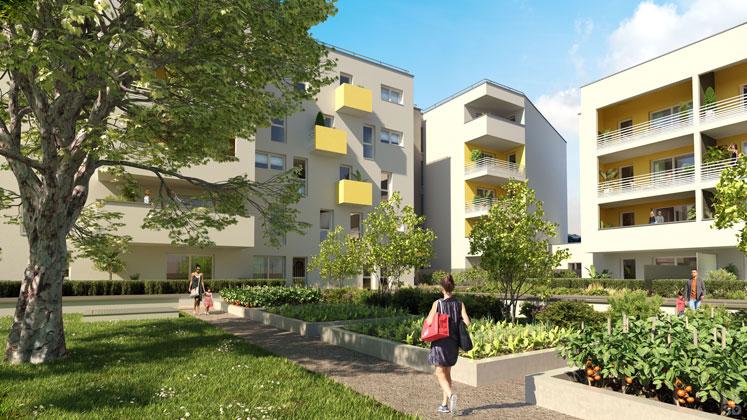 investissement-immobilier-locatif-marseille-iselection